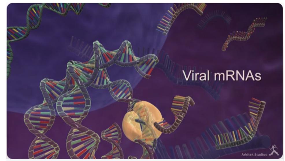 Nucleonics RNAi